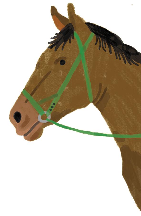 Iulius e la corsa delle bighe volanti - Il Cavallo Volucro